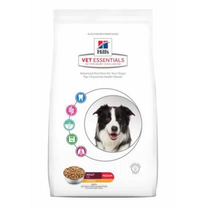 Picture of Hills Vet Essential Canine Dental Health Adult 10kg
