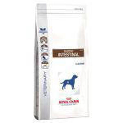 Picture of Royal Canin Gastro Intestinal (Dog) 14kg