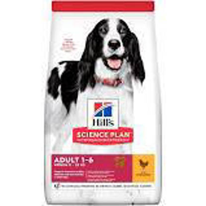 Picture of Hills Canine Adult Medium 1-6YR Chicken 14kg
